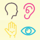 Head, ear, hand, eye icons