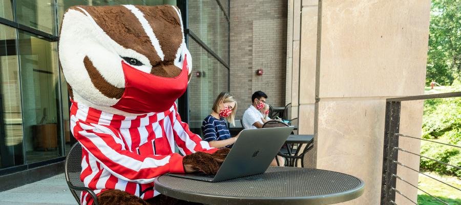 Masked Bucky using a laptop