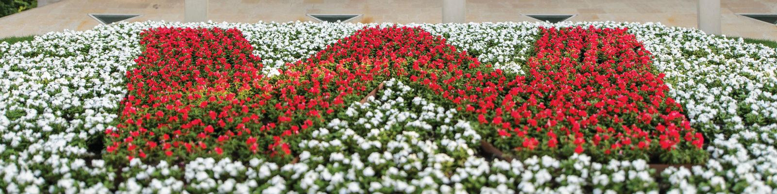 W Flower Garden