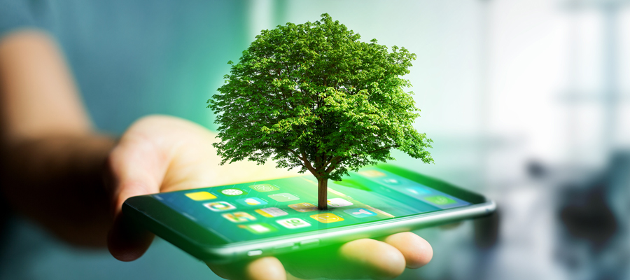 Image of a tree growing out of a smart phone