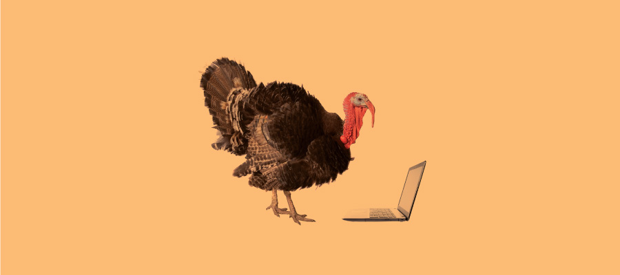 Turkey with a laptop